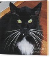 Whiskers Wood Print by Lorraine Louwerse