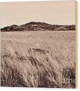 Whispering Fields Wood Print