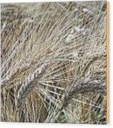 Whispering Wheat Wood Print