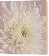 Whispering White Floral Wood Print