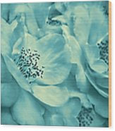 Whispers Of Teal Roses Wood Print