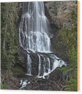 Whistler Waterfalls - Alexander Falls Wood Print