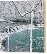 Whitaker Falls In Winter Wood Print by Thomas R Fletcher