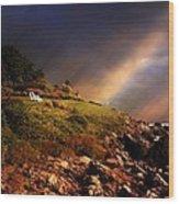 White Adirondacks Wood Print