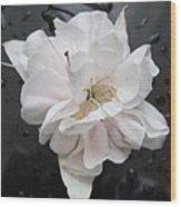 White And Black Art Wood Print