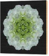 White And Green Begonia Flower Mandala Wood Print