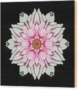 White And Pink Dahlia I Flower Mandala Wood Print