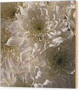 White And Pure Wood Print