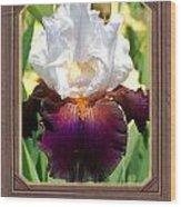 White And Purple Iris Wood Print