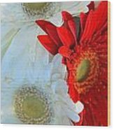 White And Red Flowers Wood Print