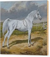 White Arabian Stallion Wood Print