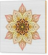 Asiatic Lily II Flower Mandala White Wood Print