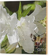 White Azalea With Friend Wood Print
