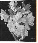 White Azaleas On Black Wood Print