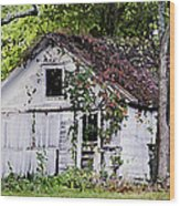 White Barn In Autumn Wood Print
