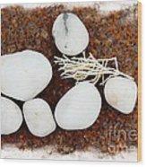 White Beach Rock Vignette Wood Print