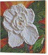 White Begonia Wood Print