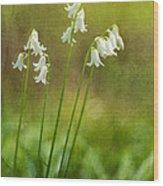 White Bells Wood Print