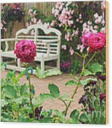 White Bench And Pink Climbing Roses In English Garden Wood Print