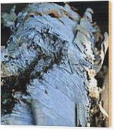 White Birch Log Wood Print