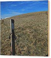 Appalachian Trail White Blaze Post Wood Print