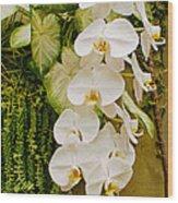 White Blooming Trail Wood Print