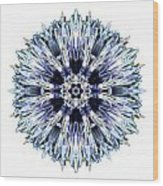 Blue Globe Thistle I Flower Mandala White Wood Print