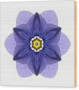 Blue Pansy I Flower Mandala White Wood Print