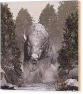 White Buffalo Wood Print by Daniel Eskridge