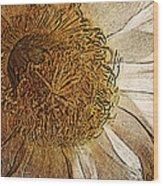 White Cactus Flower Gold Leaf Wood Print
