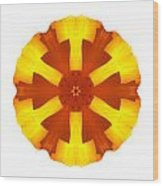California Poppy I Flower Mandala White Wood Print