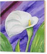 White Calla Lily Purple Mood Wood Print