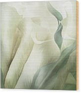 White Calla Moods Wood Print