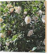 White Camellias Wood Print by Carol Groenen
