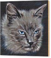 White Cat Portrait Wood Print