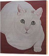 White Cat Wood Print