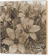 White Chocolate Wood Print