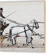 White Coach Horses Wood Print