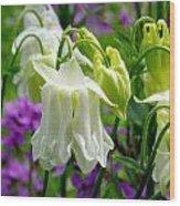 White Columbine Lanterns Verticle Wood Print