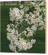 White Crabapple Wood Print