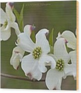 White Cross Flowers Wood Print