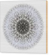 Dandelion Head I Flower Mandala White Wood Print