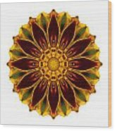 Deep Orange Marigold V Flower Mandala White Wood Print