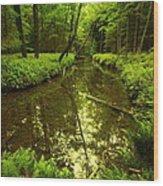 White Deer Creek Wood Print