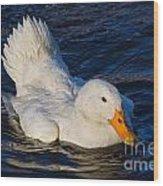 White Duck 2 Wood Print