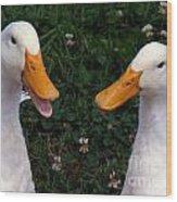 White Ducks Quacking Wood Print