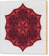 Dying Amaryllis IIi Flower Mandala White Wood Print