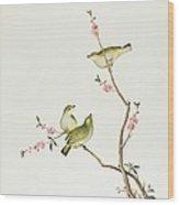 White Eye Bird Wood Print