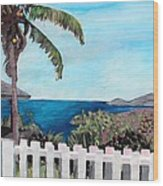 White Fence At English Harbour Antigua West Indies Wood Print