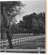 White Fence On The Wooded Green Wood Print
